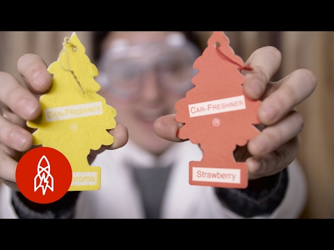 The Story of the Little Tree Car Air Fresheners: So Fresh and So Clean