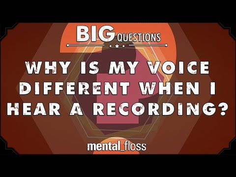 Why is my voice different when I hear a recording? - Big Questions - (Ep. 207)