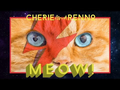 Cherie and Renno / MEOW! (Official music video)
