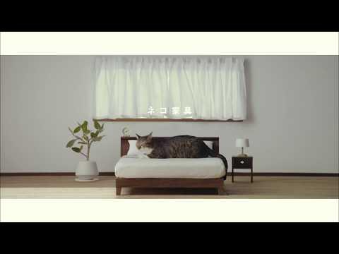 第1弾【ネコ家具できました】篇 First [We made cat furniture] Version