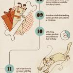 20 verrückte Fakten über US-amerikanische Tierbesitzer