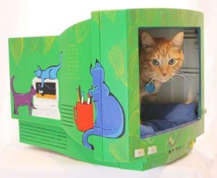 3D-Katzen-Monitor