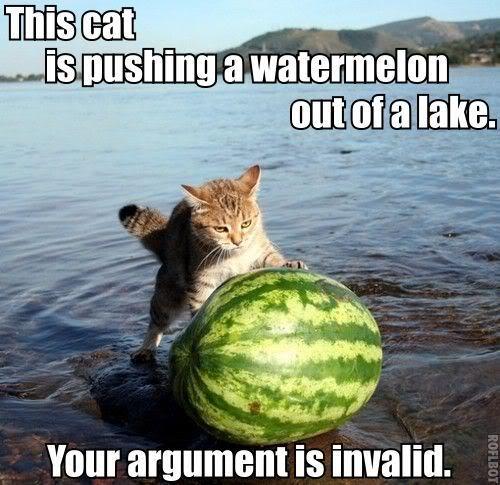 Katze Wassermelone Argument