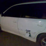 Katzenklappe… im Auto!