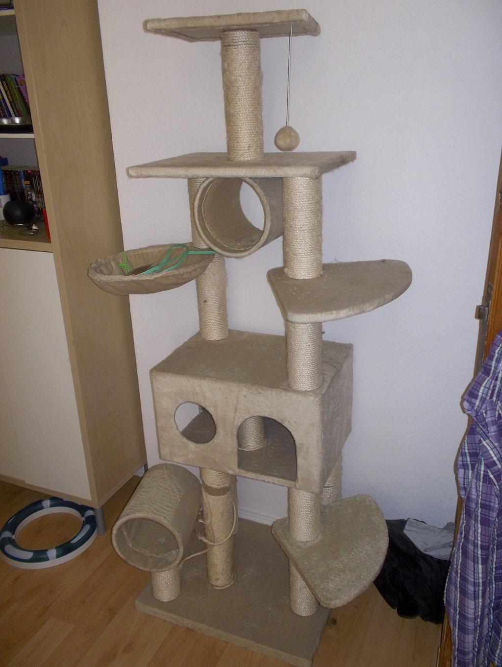 katzenbesitzer aufgepasst verlost kratzbaum freie wahl oder 149 amazon. Black Bedroom Furniture Sets. Home Design Ideas