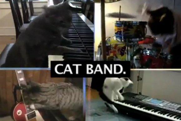 catband