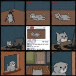 Comic: YouTube-Star werden ist nicht leicht, selbst für Katzen