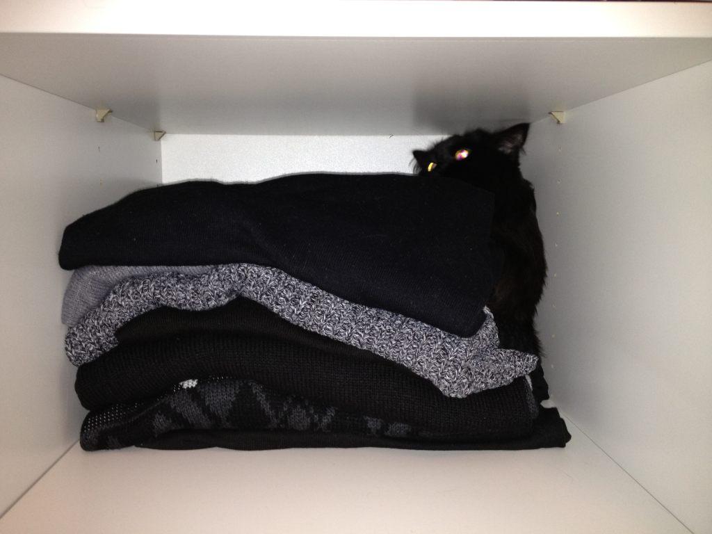 und pl tzlich ist die katze weg gillyberlin. Black Bedroom Furniture Sets. Home Design Ideas