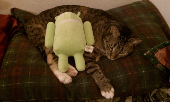 Android Cat