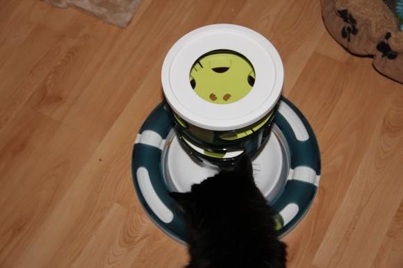 Catit Katzenspielzeug