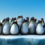 Individualverkehr ist gefährlich: It's smarter to travel in groups (witzig mit Tieren)