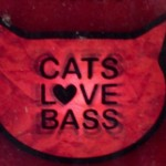 Cats Love Bass