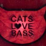 Cats Love Bass