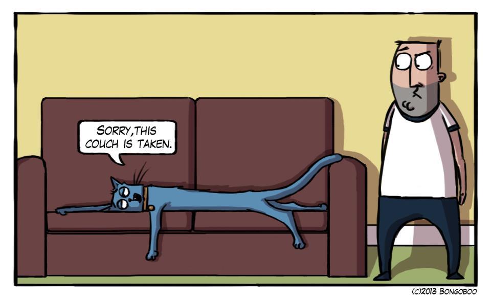Katzen Comics