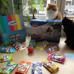 Ein Paket für Bebbie und Barnie: Die Dreamies Funbox (mit Katzen-Video!)