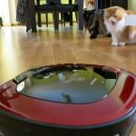 Wir haben jetzt einen Staubsaugerroboter – Und unsere Katzen so: o___O