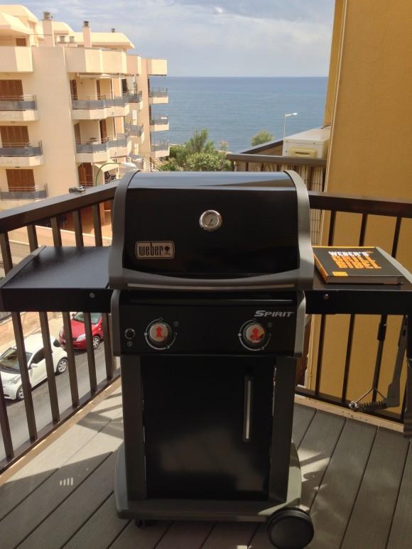 Mein neuer gas grill weber spirit e 210 orirginal for Weber grill berlin