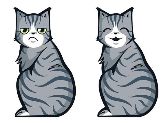 Katzenschweibenwischer 1