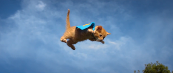 Flying Kittens and Puppies