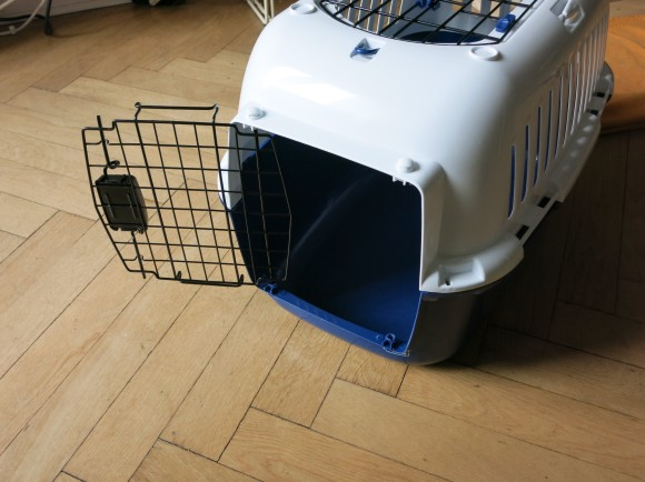 Katze Transport Flugzeug sicher absichern Cat Carrier Airplane 02
