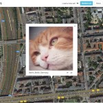 Kunstprojekt 'I know where your cat lives' und meine Katze Barnabas ist dabei