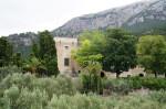 rp_Monestir-de-Miramar-38-772x514.jpg