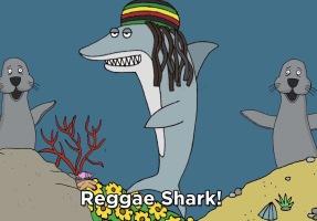 Reggae-Shark