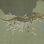 Erklärbärvideo: Die Geschichte der Chinesischen Mauer(n)