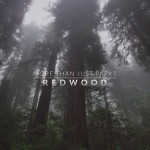 Fernweh: Redwood National and State Parks