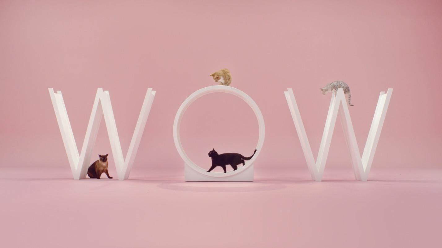 Katzen-Musikvideo: De Jeugd Van Tegenwoordig – Manon