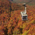 Fernweh: Herbst in der japanischen Tohoku Region
