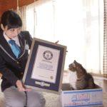 Maru hat übrigens einen Eintrag im Guinness-Buch der Rekorde
